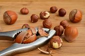 foto of nutcracker  - Broken hazelnut in nutcracker on wooden background and some hazelnuts around - JPG