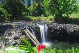 stock photo of samoa  - Exotic waterfall on the island of Upolu in Samoa - JPG