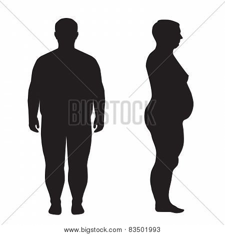 vector fat body,