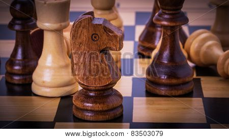 Chesses On The Chess Board