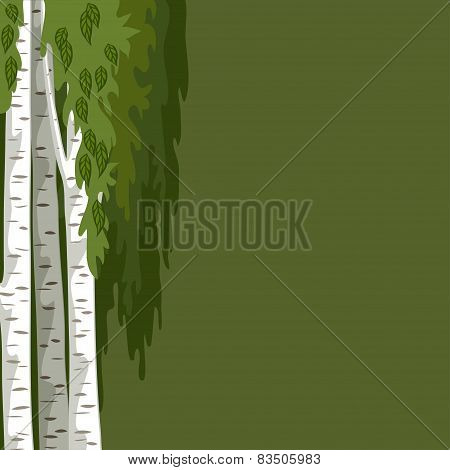 Green Background With Birches
