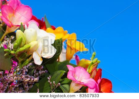 A bouquet of flowers from fresia on the background of blue sky