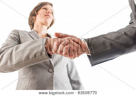 Businesswoman Shaking Hands With A Businessman As They Seal A Deal