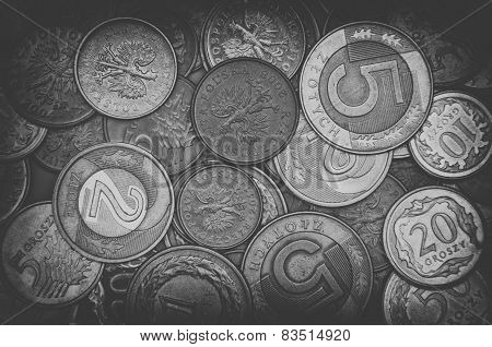Polish Coins In Black And White Background