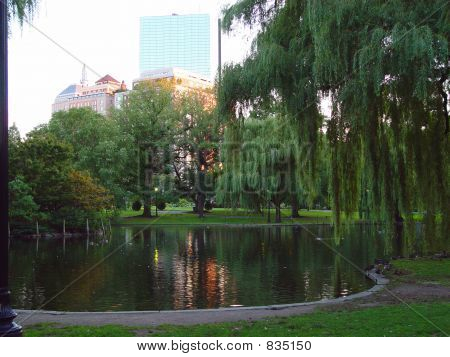 Boston Public Gardens at Dusk