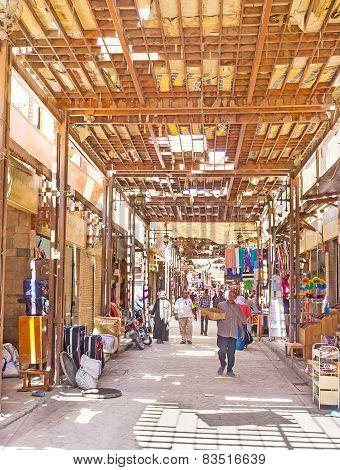 The Shady Street