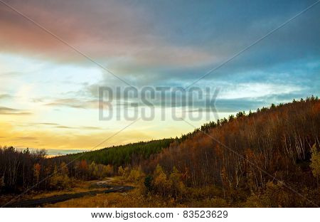 Forest road in autumn taiga at sunset