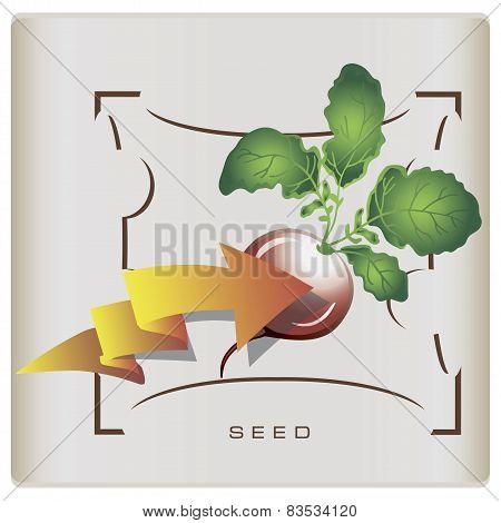 Packaging Seeds Of Radish
