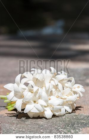 Group Of White Flower (indian Cork Tree).