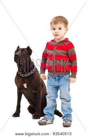 Cute boy standing next to a dog