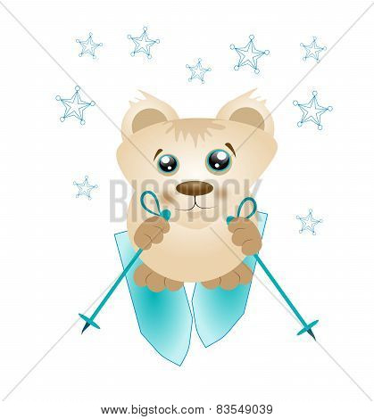 Cute Bear On Ski