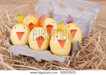Group Of Easter Egg Chicks