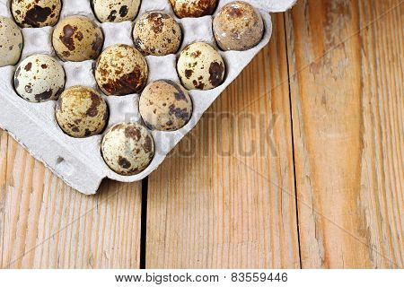 Closeup Of Some Quail Eggs