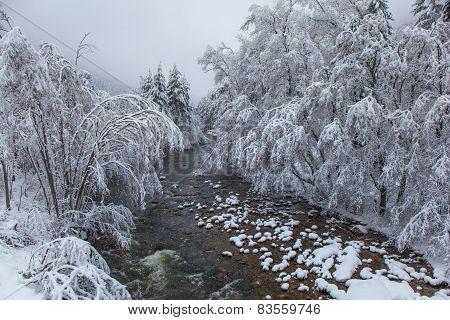 Snowy River Landscape