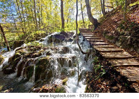 Boardwalk In Plitvice Falling Lakes National Park