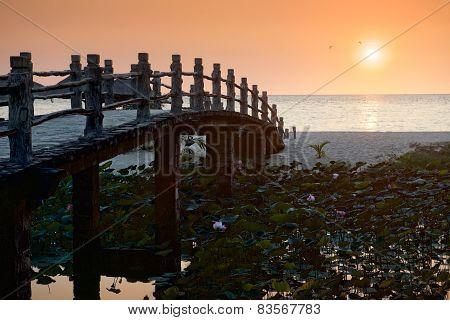 Bridge stone, lotus, and  sunset.