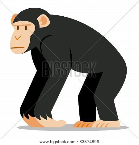Vector Cartoon Chimp Isolated On Blank Background
