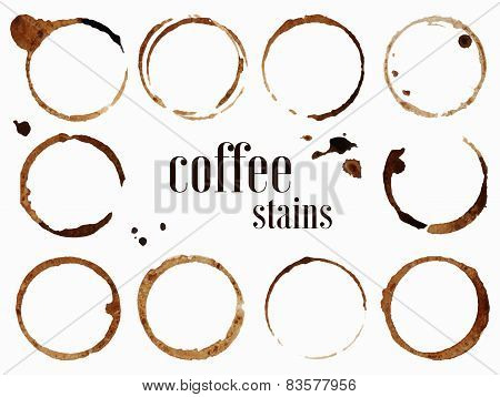 Coffee stains. Isolated vector illustration.