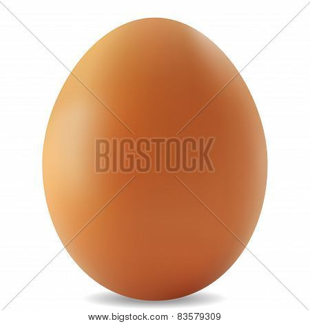 Egg - Illustration