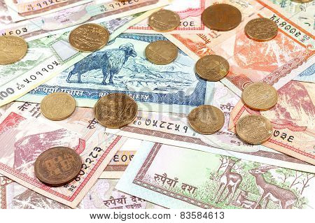 Money From Nepal, Various Rupee Banknotes And Coins.