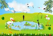 image of stork  - spring composition of storks and frogs - JPG