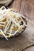 picture of soybean sprouts  - Mungbean Sprouts  - JPG
