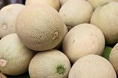 stock photo of muskmelon  - pile of cantaloupe fruit for sale in the market - JPG