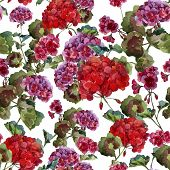 picture of geranium  - Beautiful watercolor vector pattern with red and pink geranium flwers - JPG