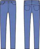 stock photo of skinny  - Vector illustration of skinny jeans - JPG