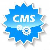 picture of starburst  - Cms web blue starburst icon on a white background - JPG