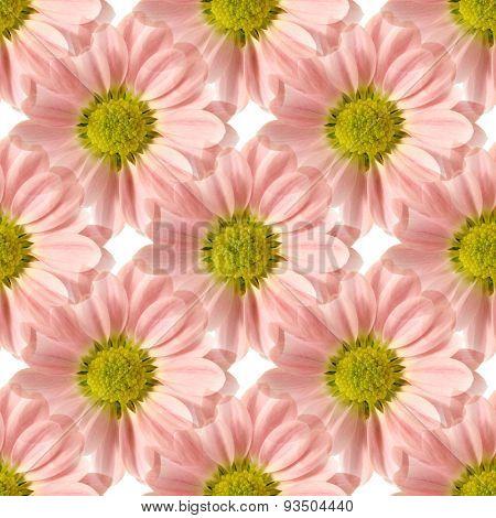 Seamless Pink Daisy Design 1
