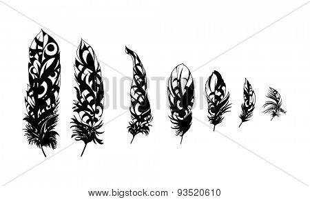 black feathers on white background