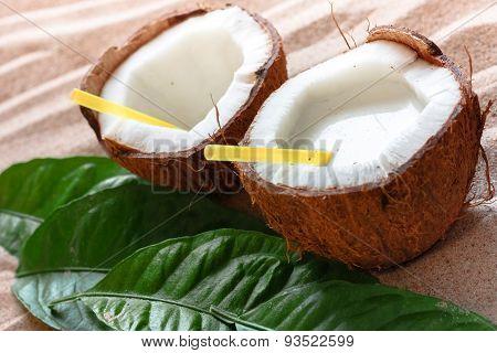 coconut on the sand beach
