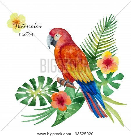 Watercolor Parrot, Flowers And Leaves