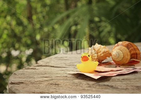 Yellow Rubber Duck , Conch With Money Of Thai Bath.