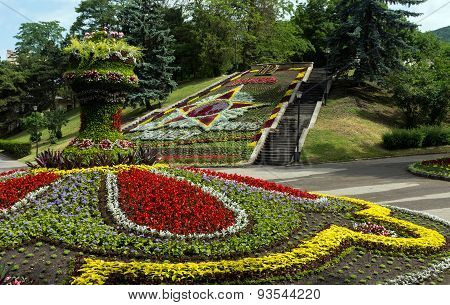 Beautiful Flowerbed In Pyatigorsk.