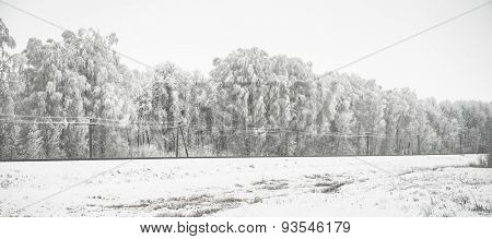 beautiful panorama with snow-covered trees and railway