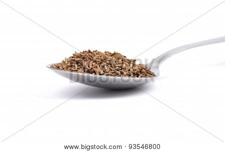 Caraway Seeds On Spoon