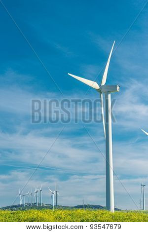 wind generator in a field on beautiful blue sky background