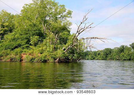 Coosa River in Vincent, AL