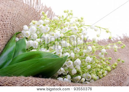 Lilies Of The Valley On The Sacking