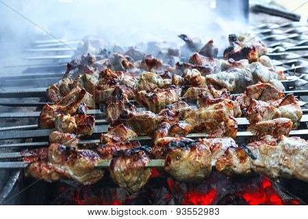 Appetizing shashlik with onions