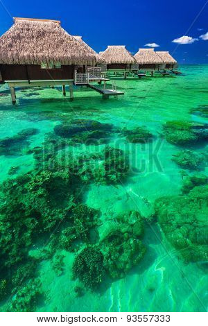 Water villas on the green tropical reef, the best island holidays