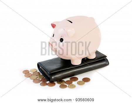 Money Accumulation Concept. Money And Piggy Bank Isolated On White Background