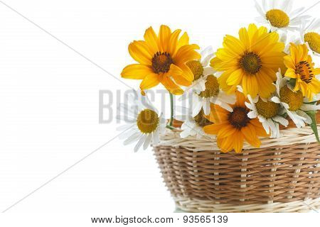 Bouquet Of Yellow And White Daisies