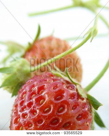 Pure Organic Strawberry