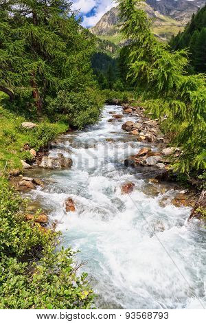 Mountain Stream On Summer