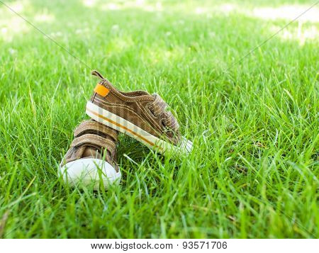 Baby Sneakers Are On The Grass.