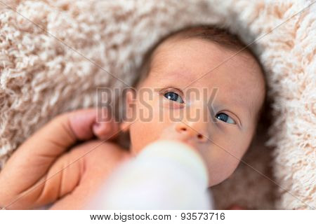 Feeding baby boy with milk from the bottle