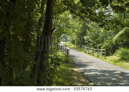 Quiet Bike Path